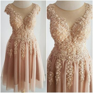 Pink Round Neck Illusion Appliques Lace 2020 Homecoming Dress A-line