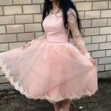 Pink Long Sleeves Lace A-line 2020 Homecoming Dress